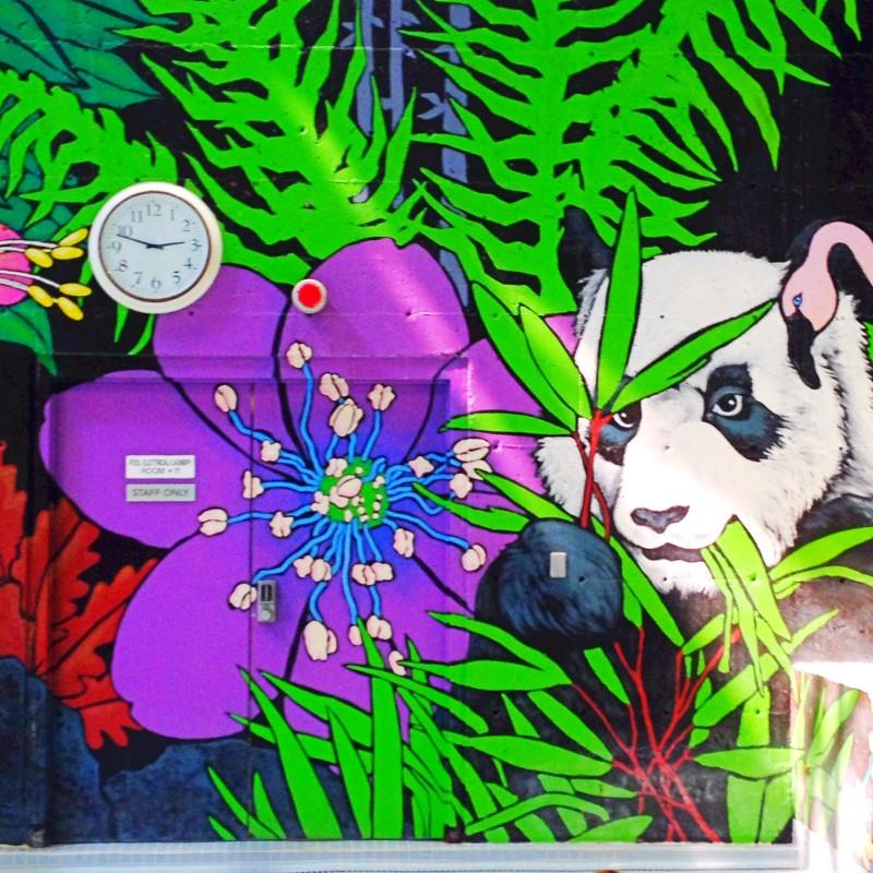 VSLC Door Mural