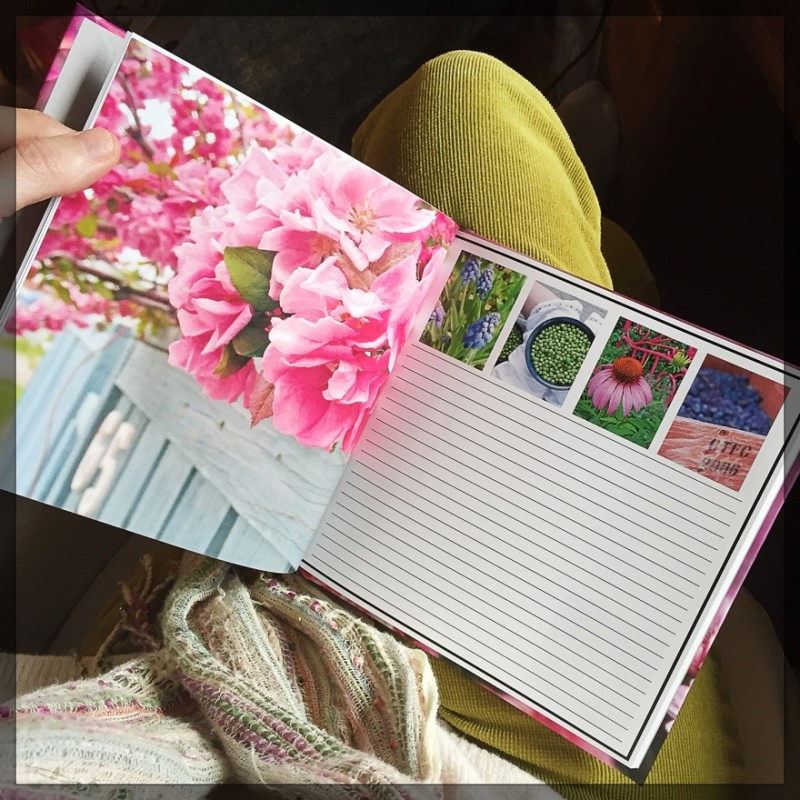 KateWares Garden Journal Pink Blossoms Page