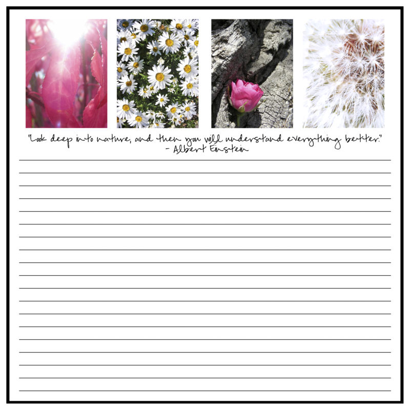 Sample Page Garden Journal V.2
